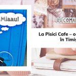 La Pisici Cafe – o cafenea unică în Timișoara