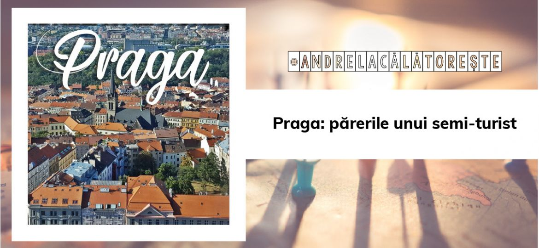 paragaAsset 43-80