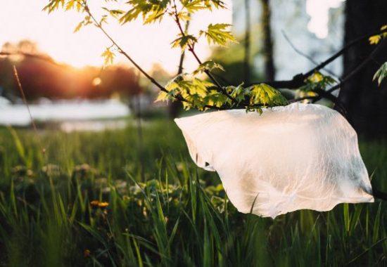 O lună fără plastic: #PlasticFreeJuly